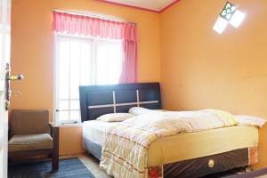 foto kamar dan rumah penginapan dieng murah (46)